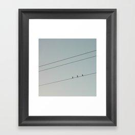 three little birds Framed Art Print