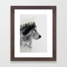Wolf Stare Framed Art Print