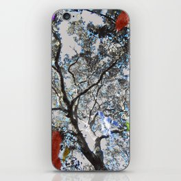 Colors in the Woods iPhone Skin