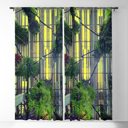 Miami urban trees Blackout Curtain