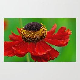 Summer flowers 0219 Rug