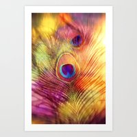 peacock feather Art Prints featuring peacock feather by Sylvia Cook Photography
