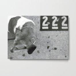 222 Metal Print