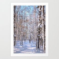 Snow Driven Art Print