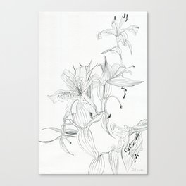 First stage of decay - black and white pencil lilies Canvas Print