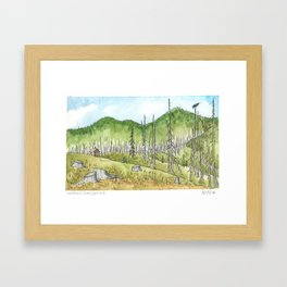 Meadows Campground After Burn Framed Art Print