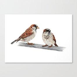 Sparrows Canvas Print