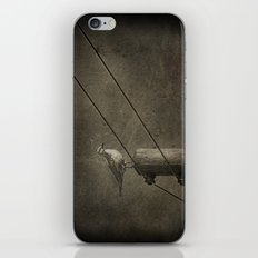 Seagull iPhone & iPod Skin