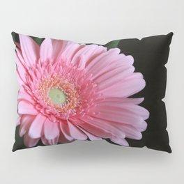 Pink Daisy Pillow Sham