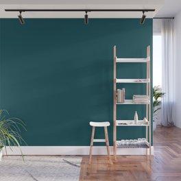 Dark Turquoise Pairs to Benjamin Moore Tucson Teal 2056-10 Wall Mural