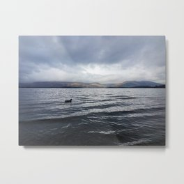 Bank of Loch Lomond Metal Print