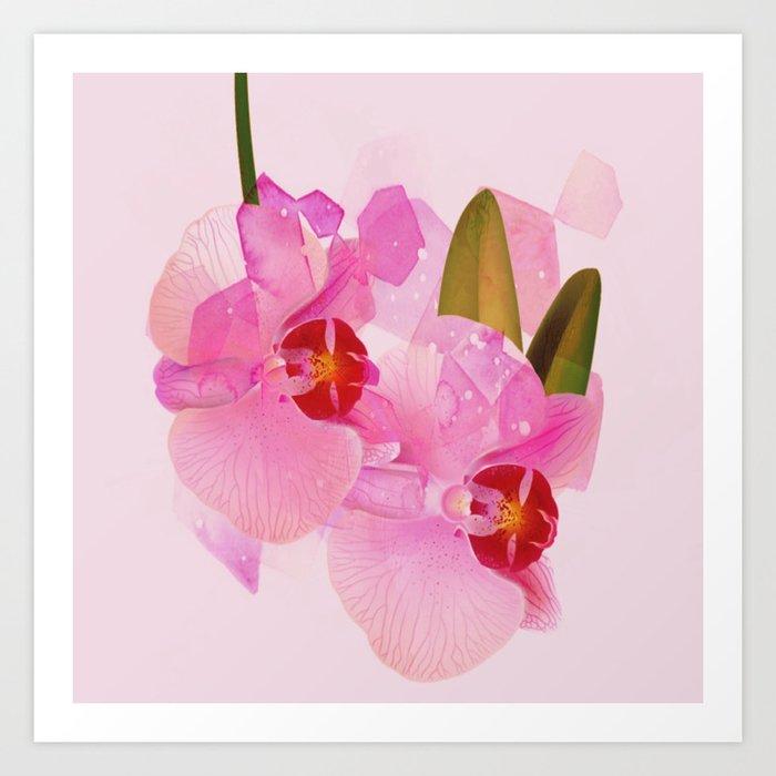 broken orchid Art Print