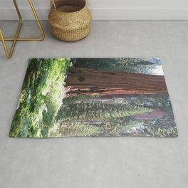 Crescent Meadow Sequoia Rug