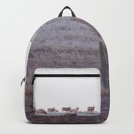 Sheep Valley Backpack