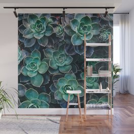 Succulent Blue Green Plants Wall Mural
