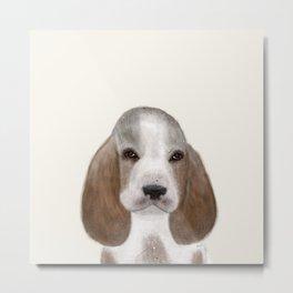 little basset hound Metal Print