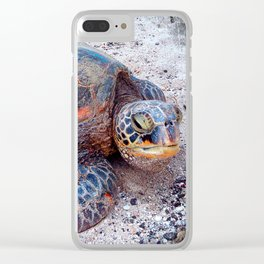 Hawaii sea turtle on sandy beach close-up photo Clear iPhone Case