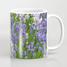 Fragrant lavender garden Coffee Mug
