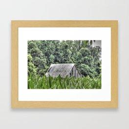 Hidden Tobacco Barn Framed Art Print
