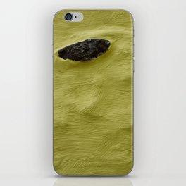 Wall Piece iPhone Skin