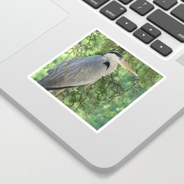Grey heron (Ardea Cinerea) amongst trees Sticker