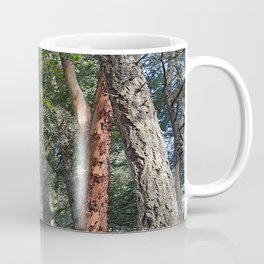 MADRONA WOODS Coffee Mug