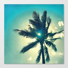 Seventh Palm Canvas Print