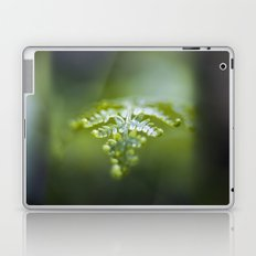 Raining Green Laptop & iPad Skin