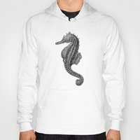 seahorse Hoodies featuring Seahorse by Tim Jeffs Art