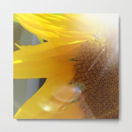 Bright Sunny Sunflower Metal Print
