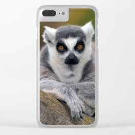 Ring-tailed Lemur Clear iPhone Case