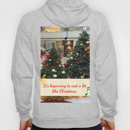 It's Beginning to Cost a Lot Like Christmas Hoody