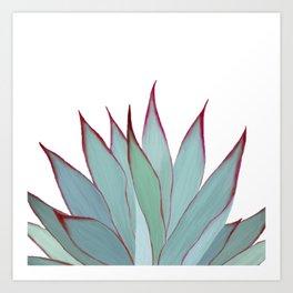 Elegant Agave Fringe Illustration Art Print