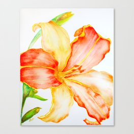 Tiger Lily 01  Canvas Print