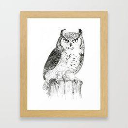 My great horned owl: Nuit Framed Art Print