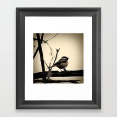 Little Bird Framed Art Print