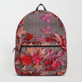 Oregon fall 3 geometry III Backpack