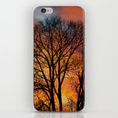 TRACERY iPhone & iPod Skin