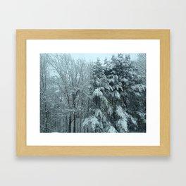 Maine Winter Framed Art Print