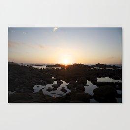 Vitamin sea Canvas Print