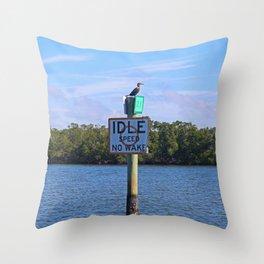 Wake Patrol Throw Pillow