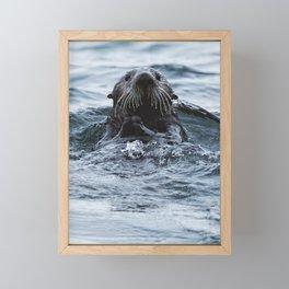 Sea Otter Framed Mini Art Print