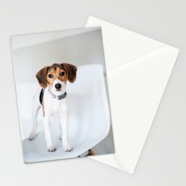 Beagle Puppy Stationery Cards