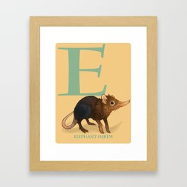E is for Elephant Shrew: Under Appreciated Animals™, unusual creatures ABC nursery decor for kids Framed Art Print