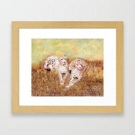 Resting Cheetahs Framed Art Print