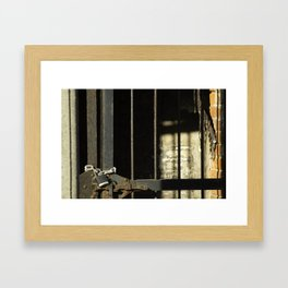 Rusty Locked Gate Framed Art Print