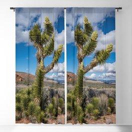 Joshua Spring Blossoms 6611 - Desert Southwest Blackout Curtain