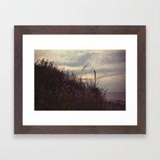 grasses2 Framed Art Print