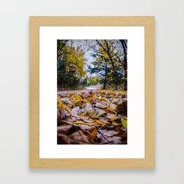 The Trail Framed Art Print