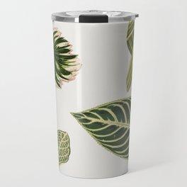 Green Botanical Plants Watercolor Pattern Travel Mug